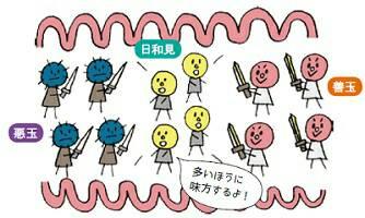 腸内フローラ 悪玉菌 善玉菌 腸内環境 画像
