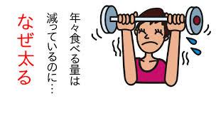 基礎代謝と筋肉量の関係