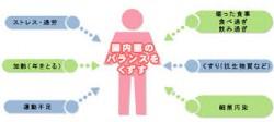 腸内菌バランス