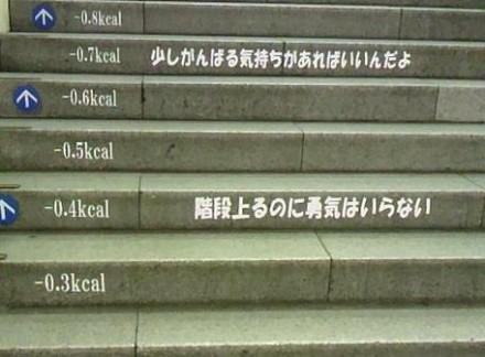 階段 ダイエット画像