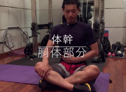 体幹 トレーニング 画像