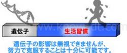 スクリーンショット 2015-06-21 20.32.00