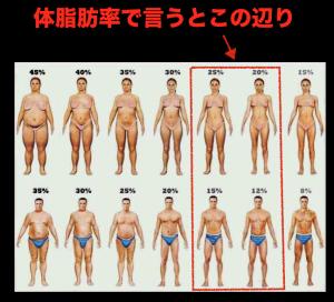 正常な体脂肪率